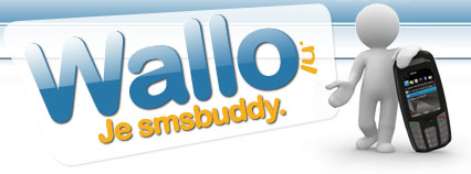 Wallo.nl logo